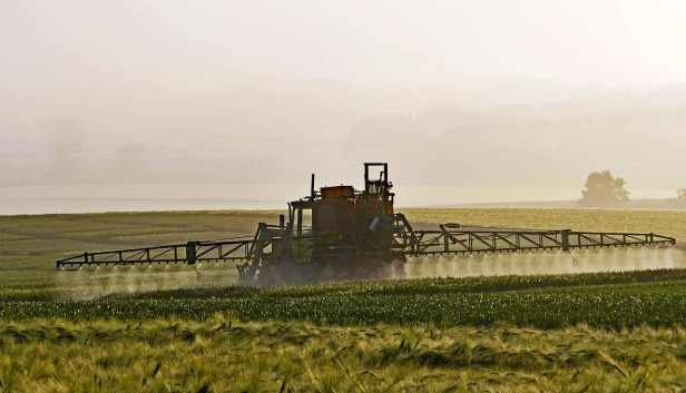 agriculture-1359862_1280